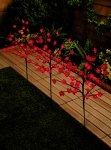 Blossom Twig Garden Lights